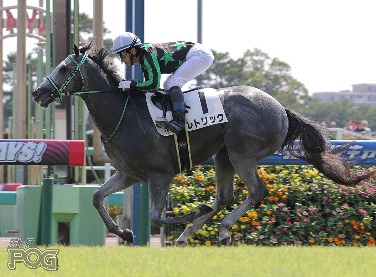 レトリックの馬体写真