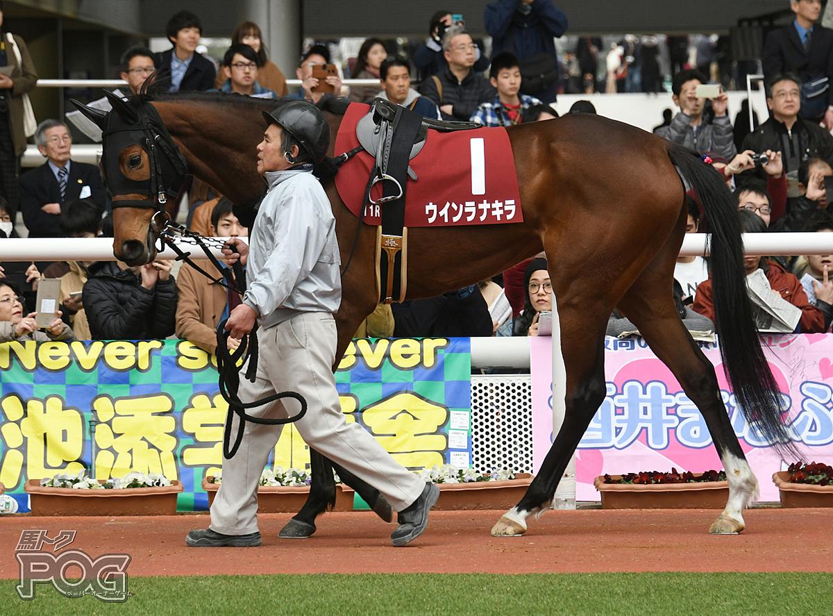 ウインラナキラの馬体写真