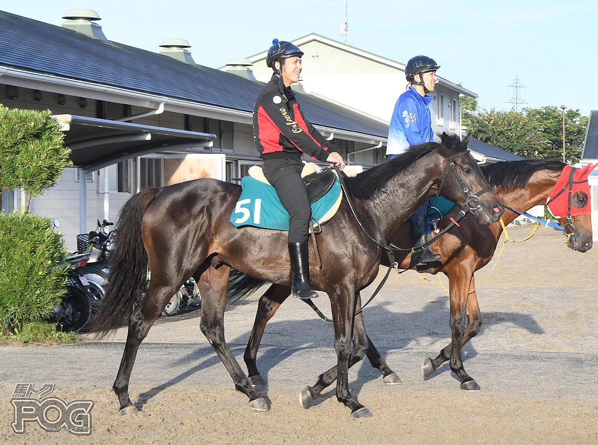 バウンスバッカーの馬体写真