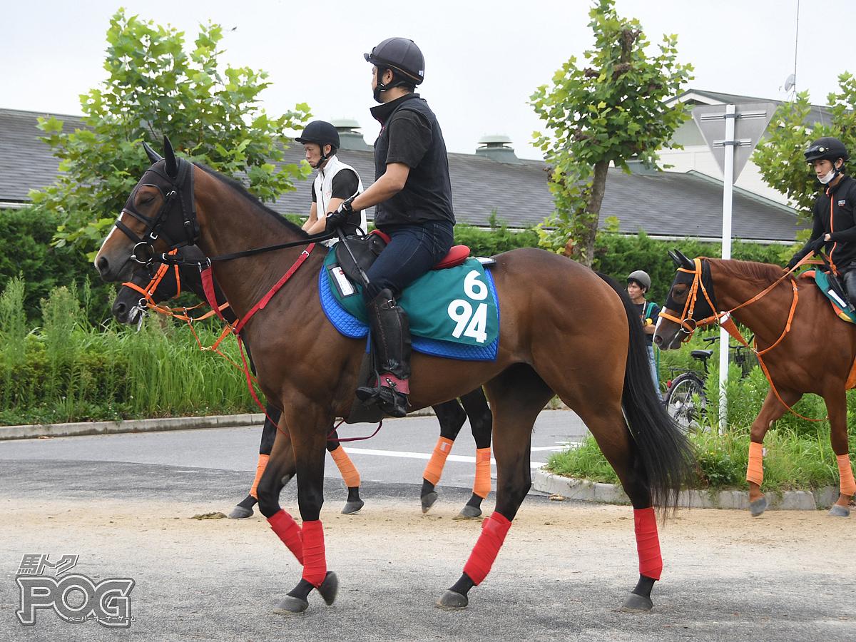 クリノユナチャンの馬体写真