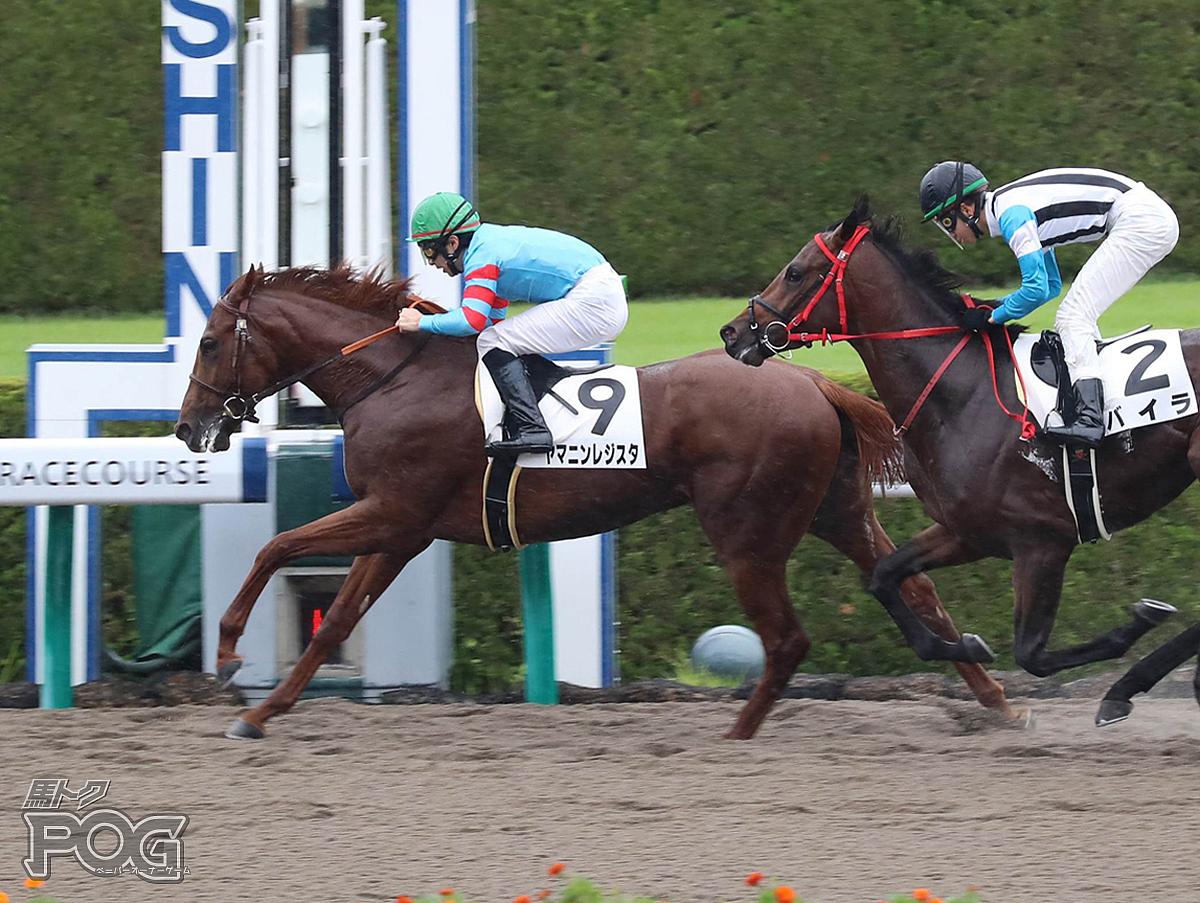 ヤマニンレジスタの馬体写真