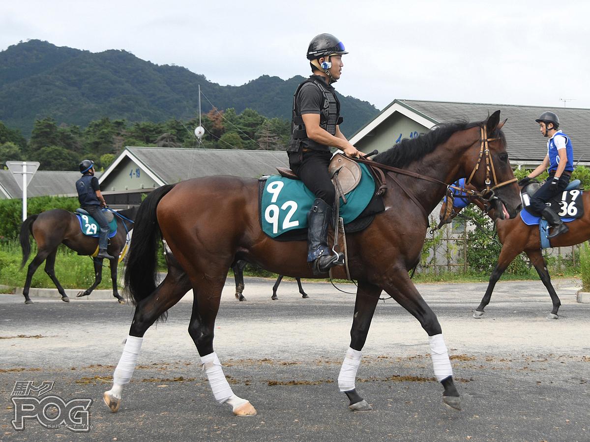 ワールドビーターの馬体写真