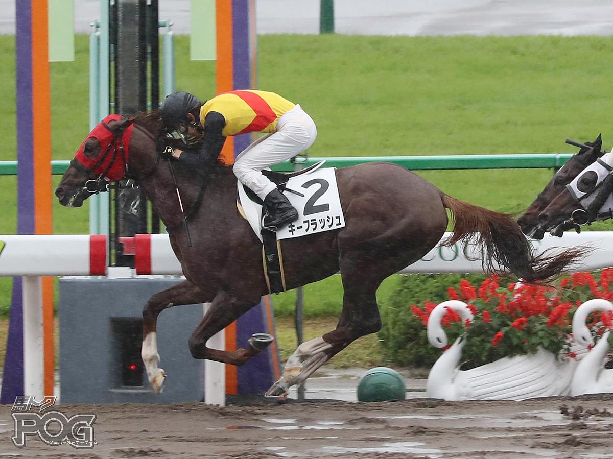 キーフラッシュの馬体写真