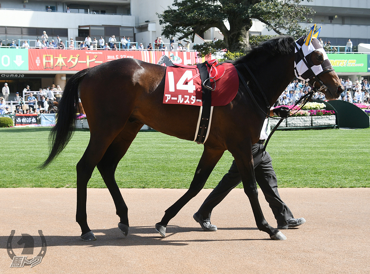 アールスターの馬体写真
