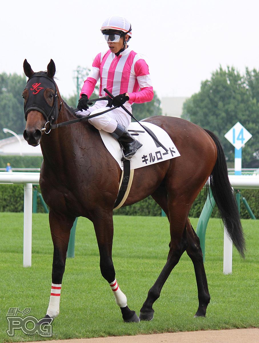 キルロードの馬体写真