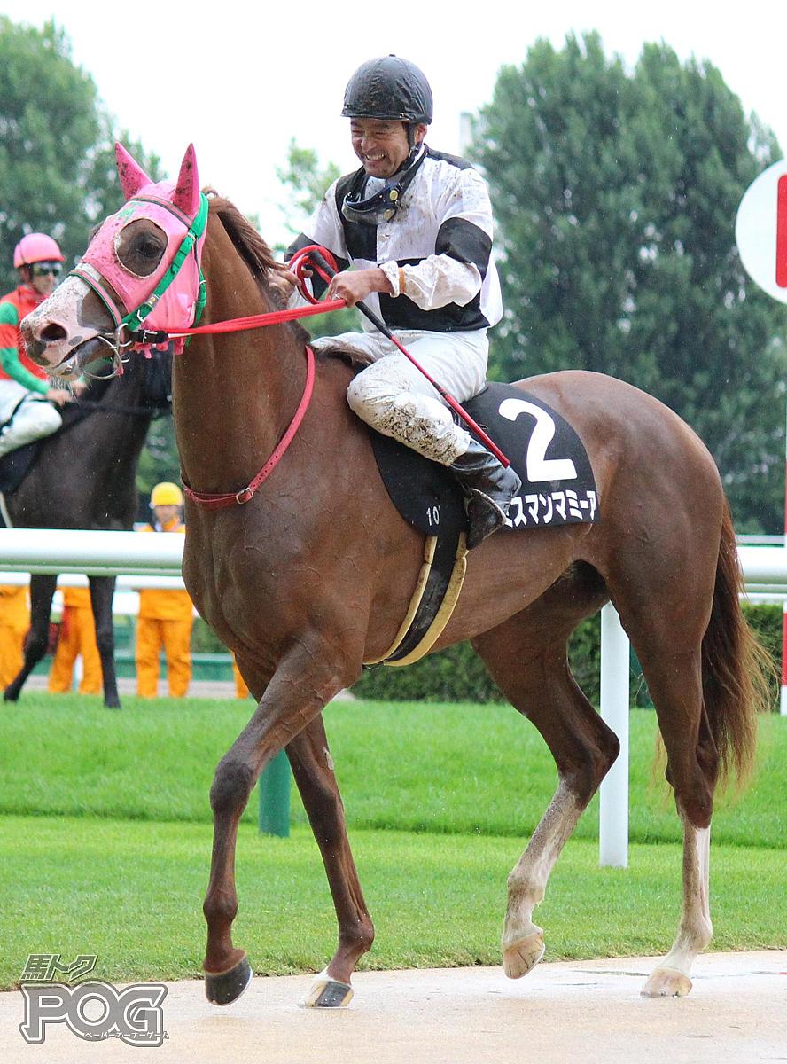 ミスマンマミーアの馬体写真