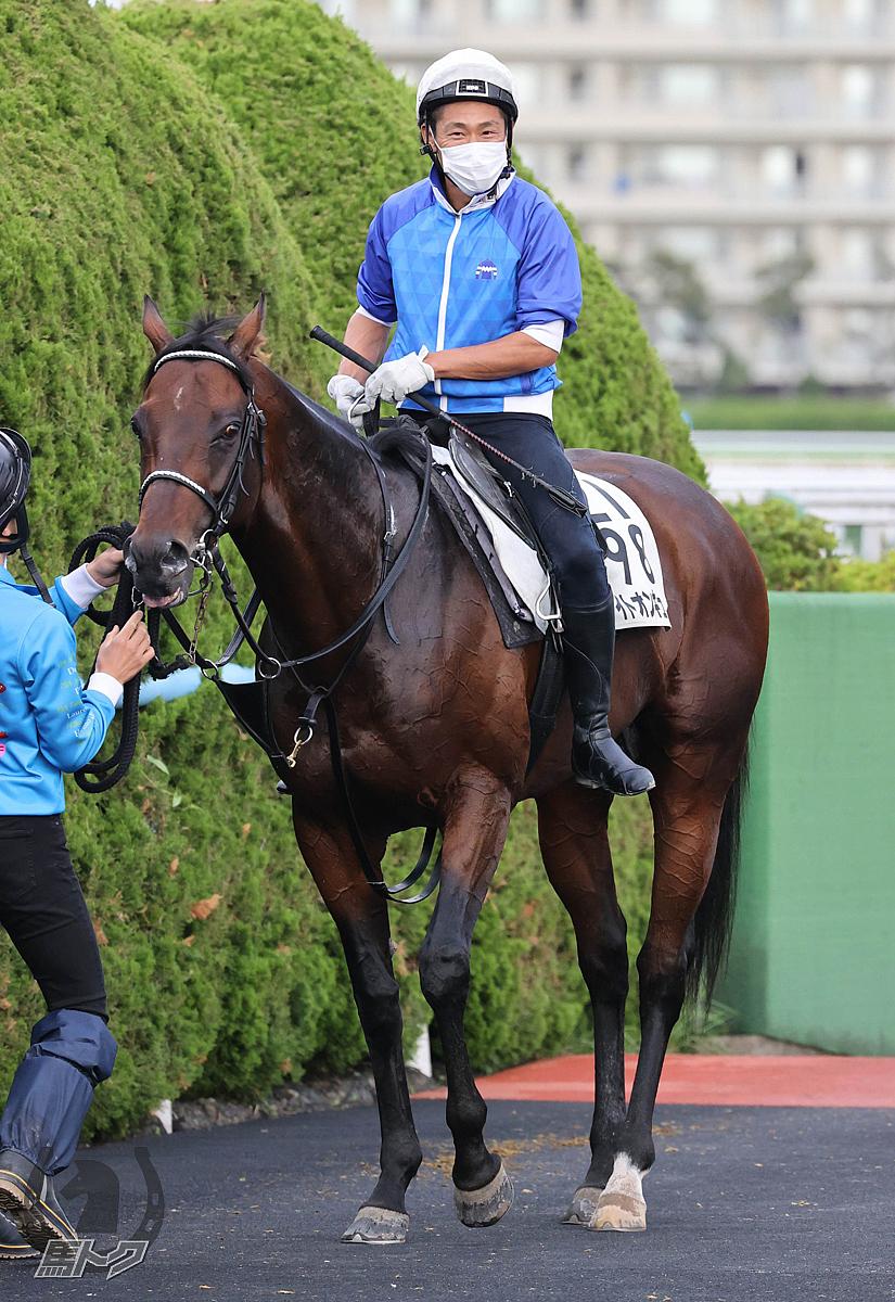 ライトオンキューの馬体写真