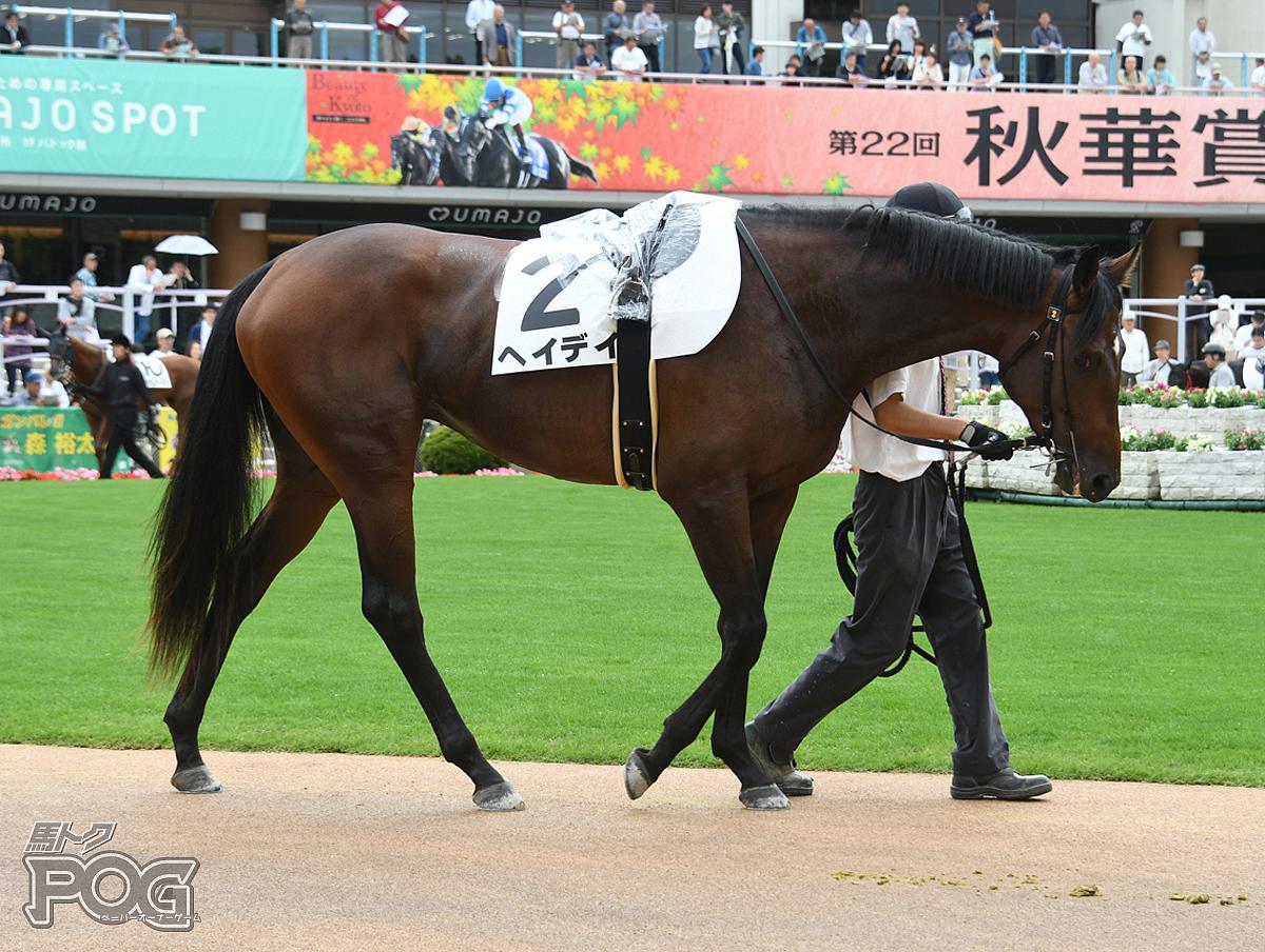 ヘイデイの馬体写真