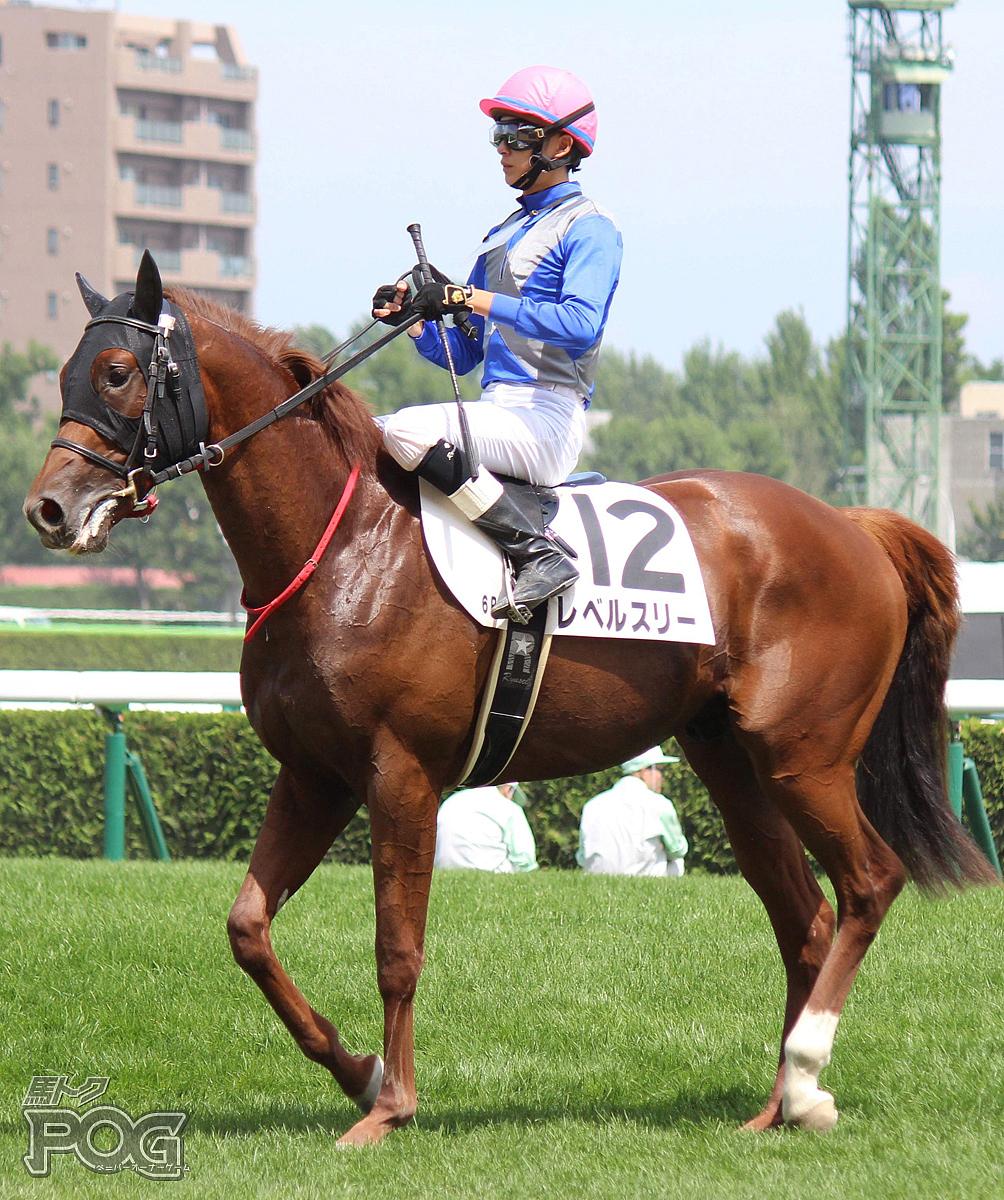 レベルスリーの馬体写真