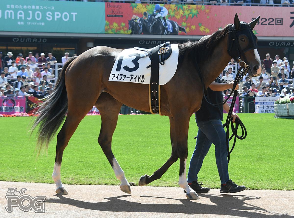 アイファーアイドルの馬体写真