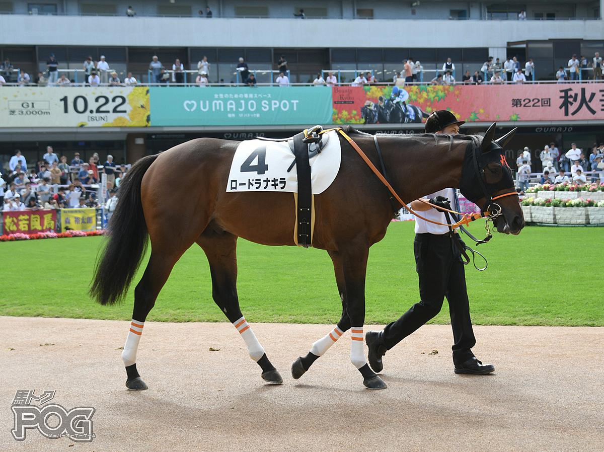 ロードラナキラの馬体写真