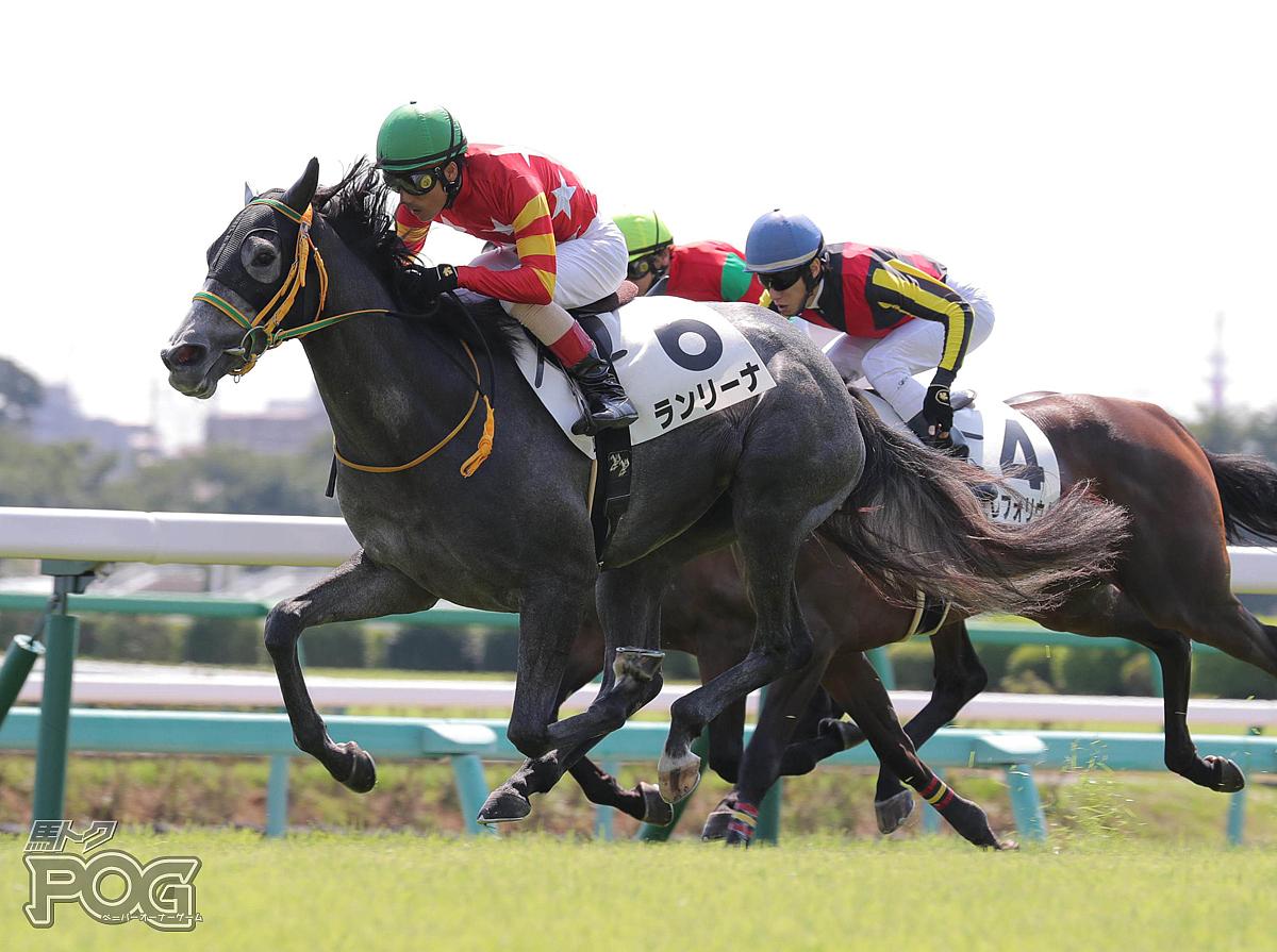ランリーナの馬体写真