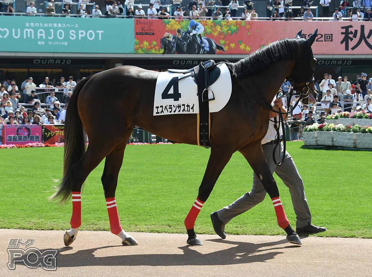 エスペランサスカイの馬体写真