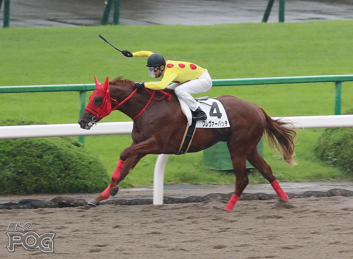 クレヴァーパッチの馬体写真