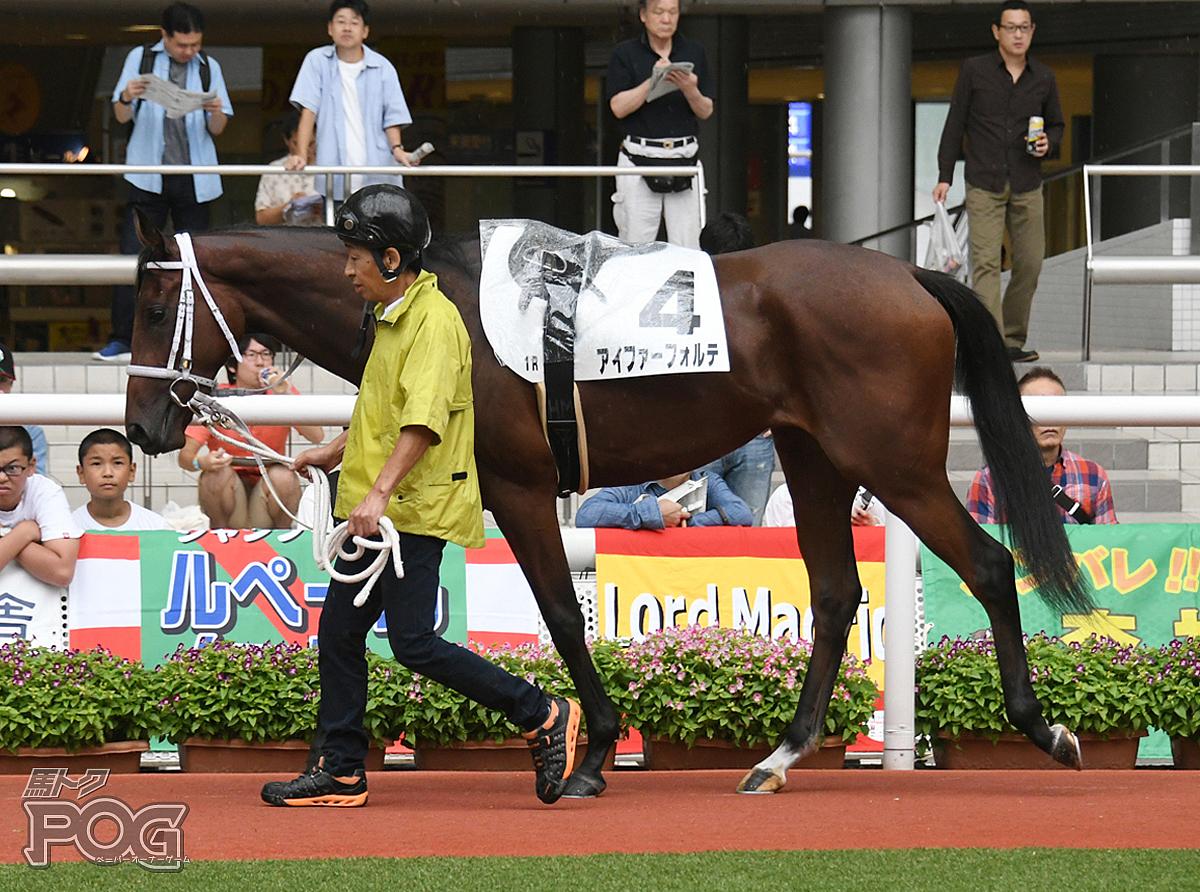 アイファーフォルテの馬体写真