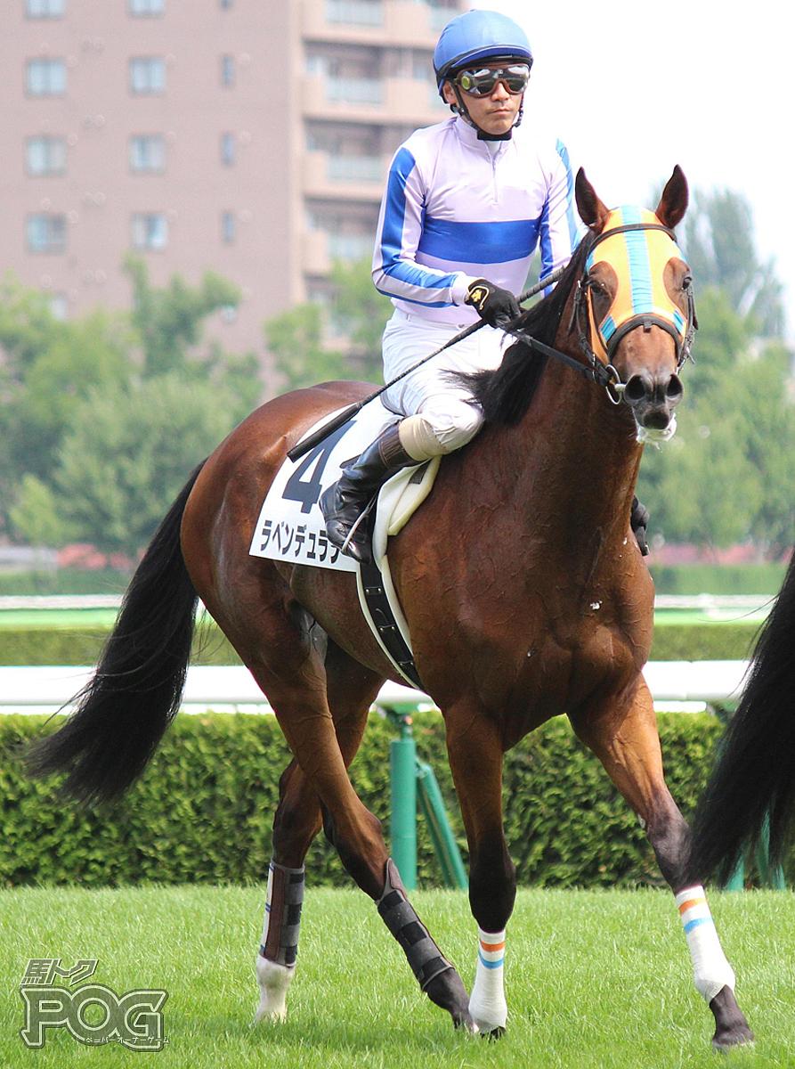 ラベンデュランの馬体写真