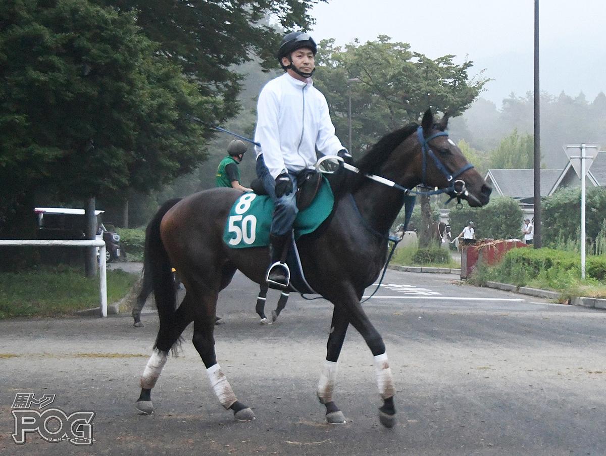キフジンの馬体写真