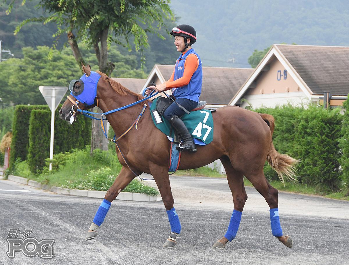 ハギノアグレッシブの馬体写真