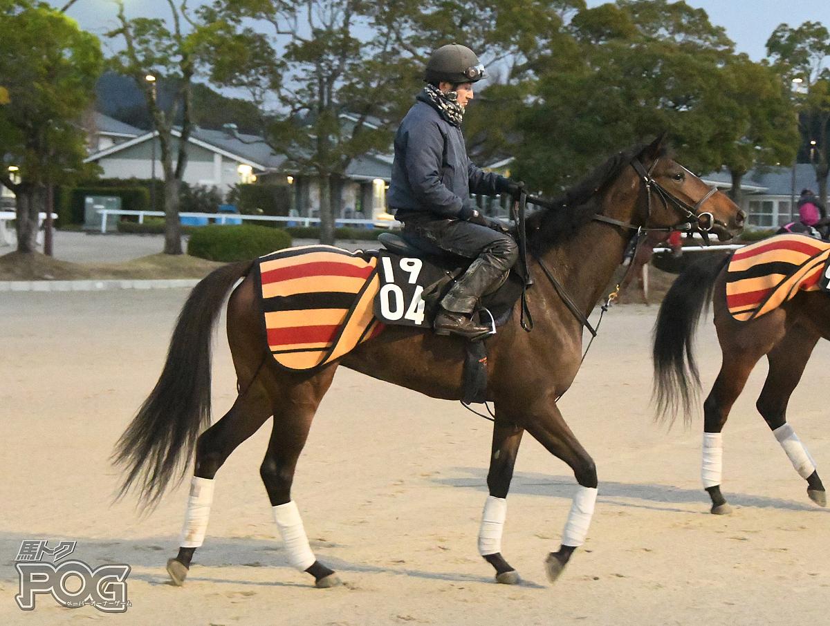 エアヴェイユの馬体写真