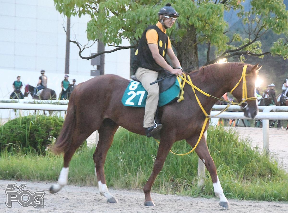 マキルヘニーの馬体写真