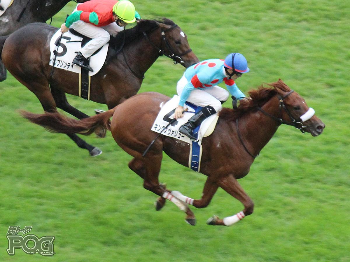 キングスヴァリューの馬体写真