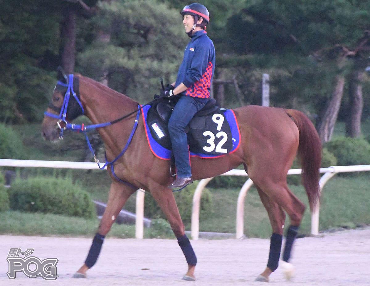 ベルフロレゾンの馬体写真