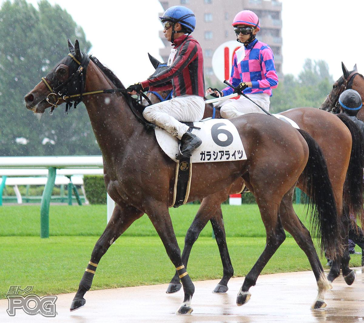 ガラシアライツの馬体写真