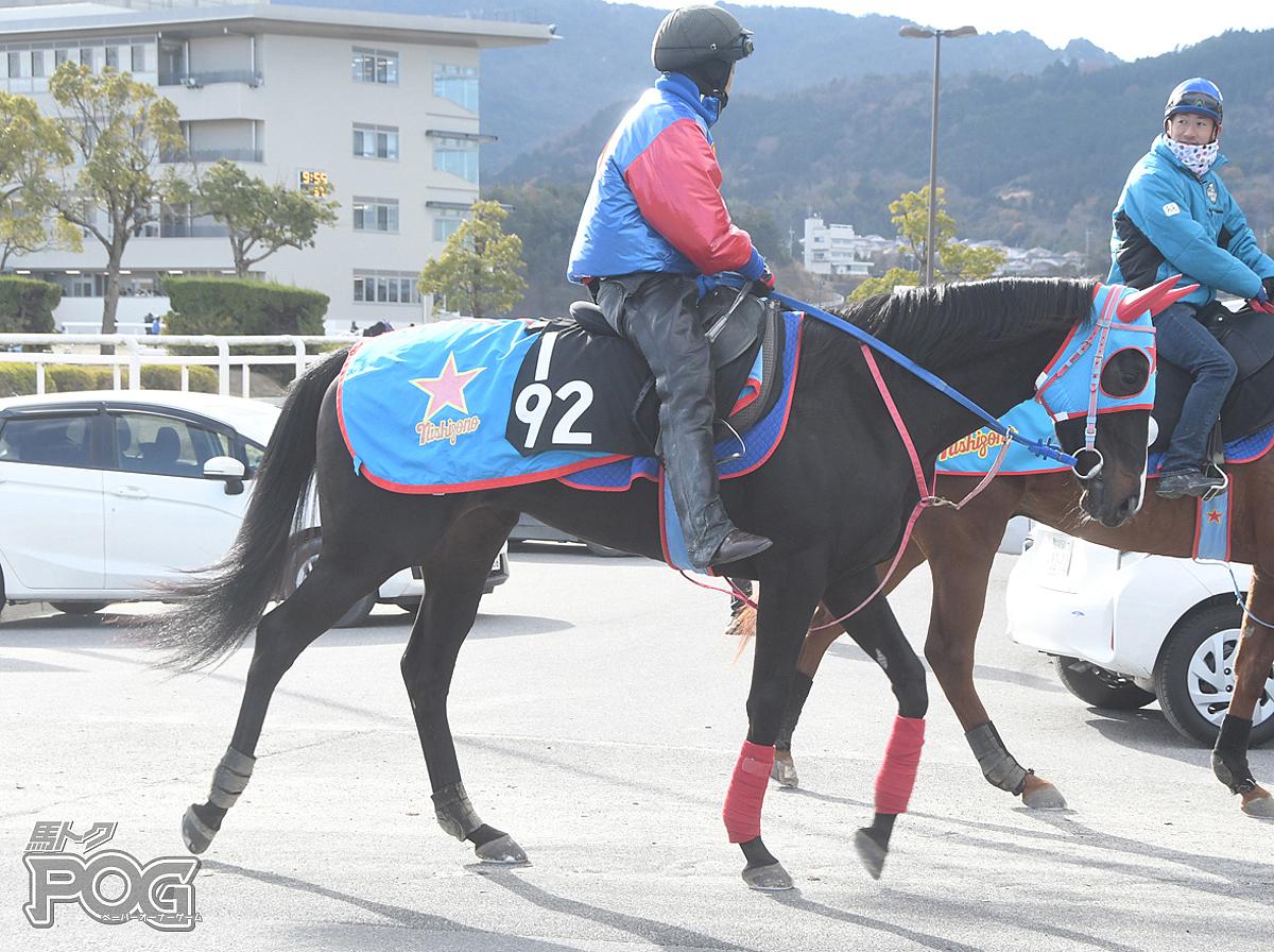 オルボンディールの馬体写真