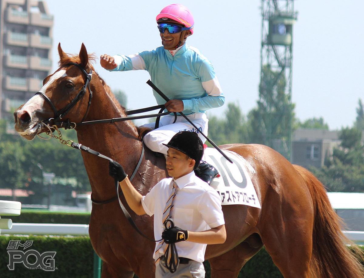 ファストアプローチの馬体写真