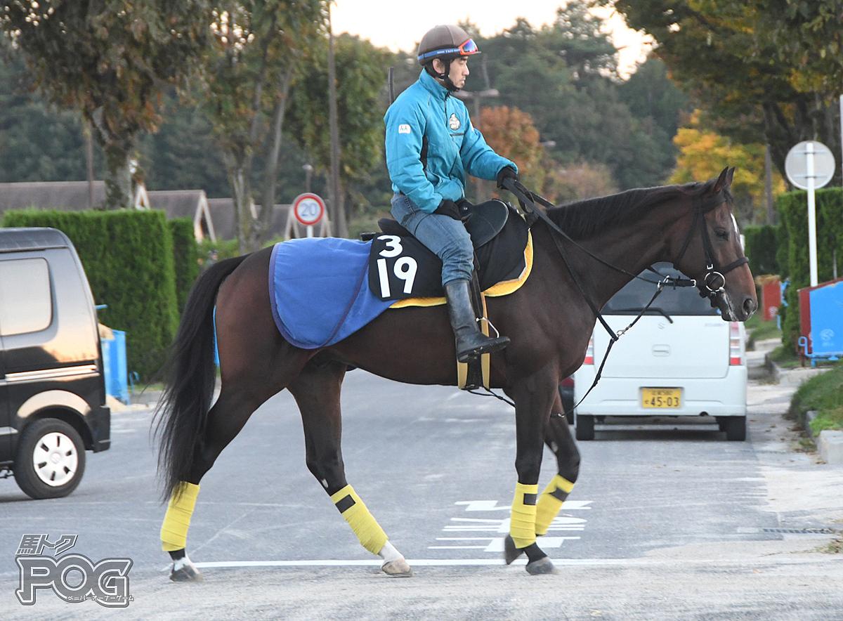 グーテンタークの馬体写真