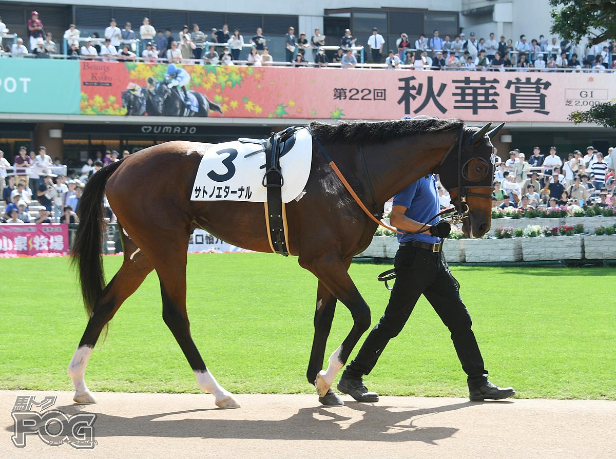 サトノエターナルの馬体写真
