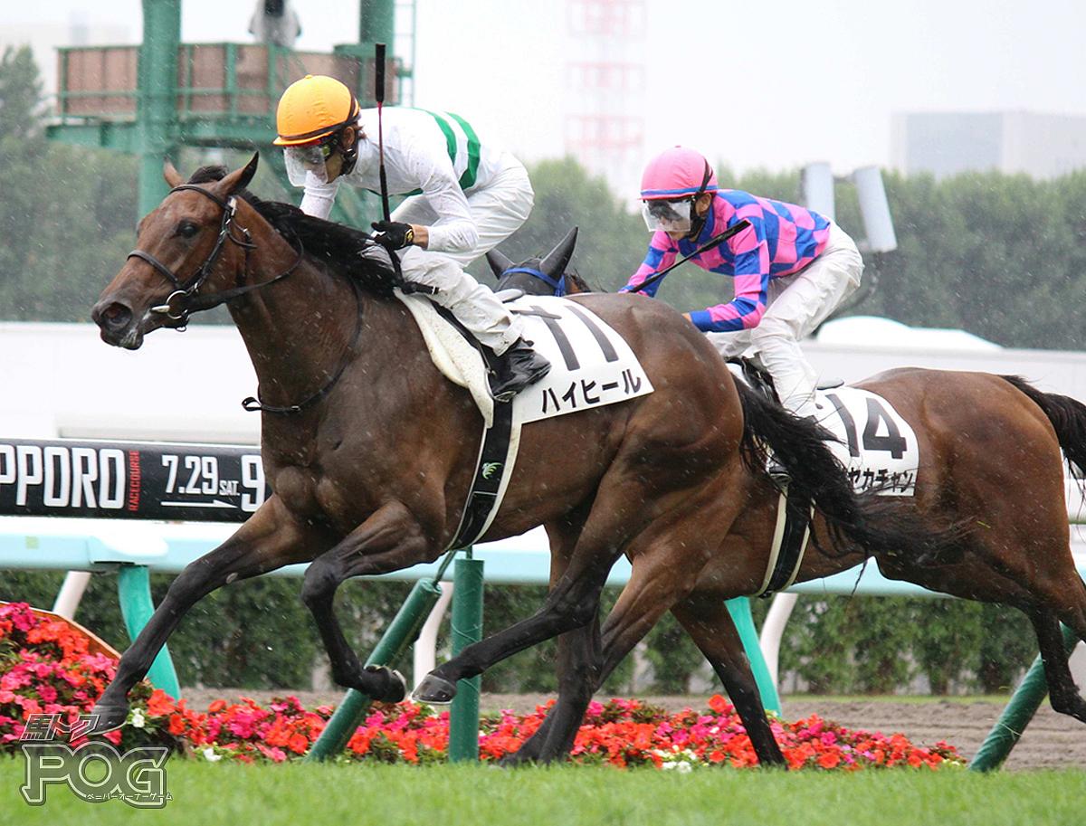 ハイヒールの馬体写真