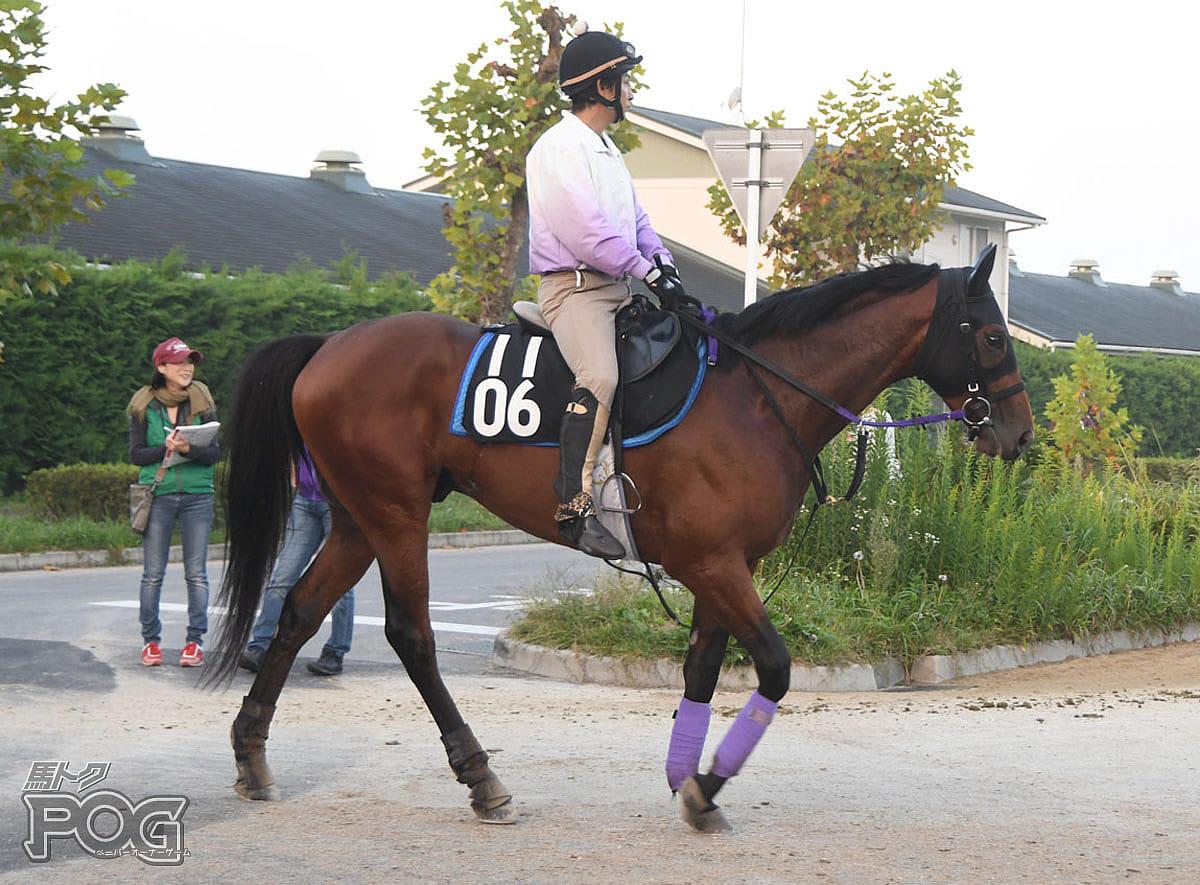 ラクロアクリスエスの馬体写真