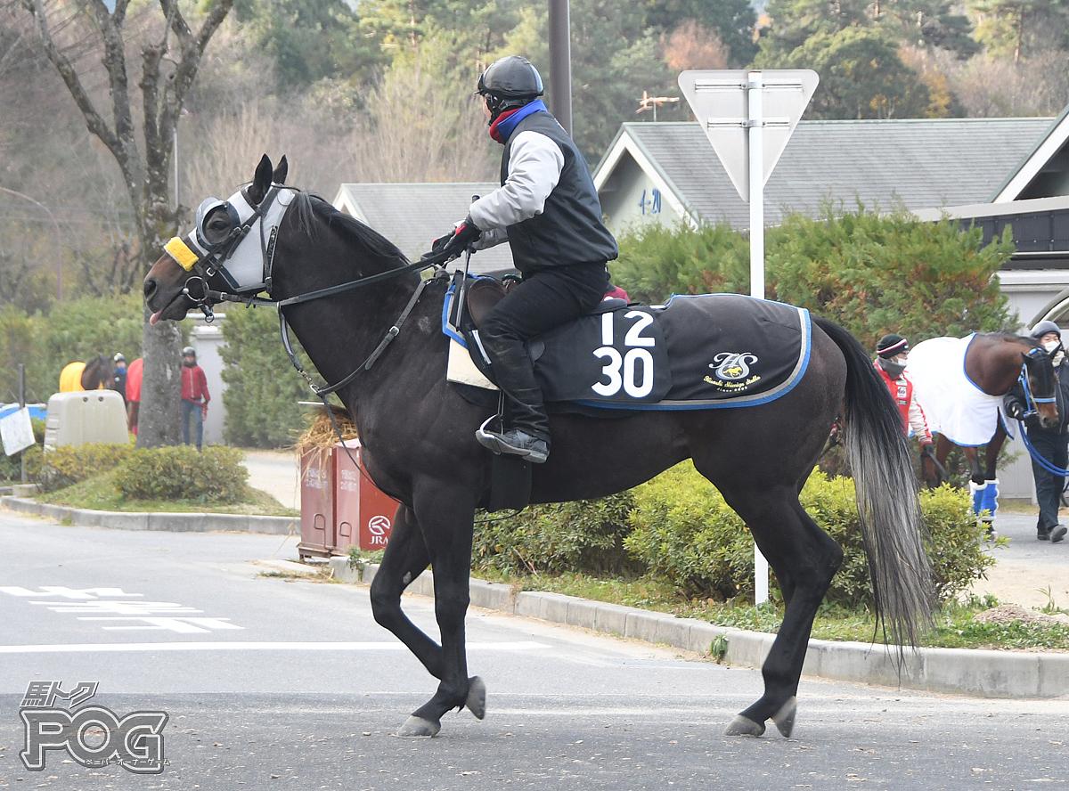 メイケイフウジンの馬体写真