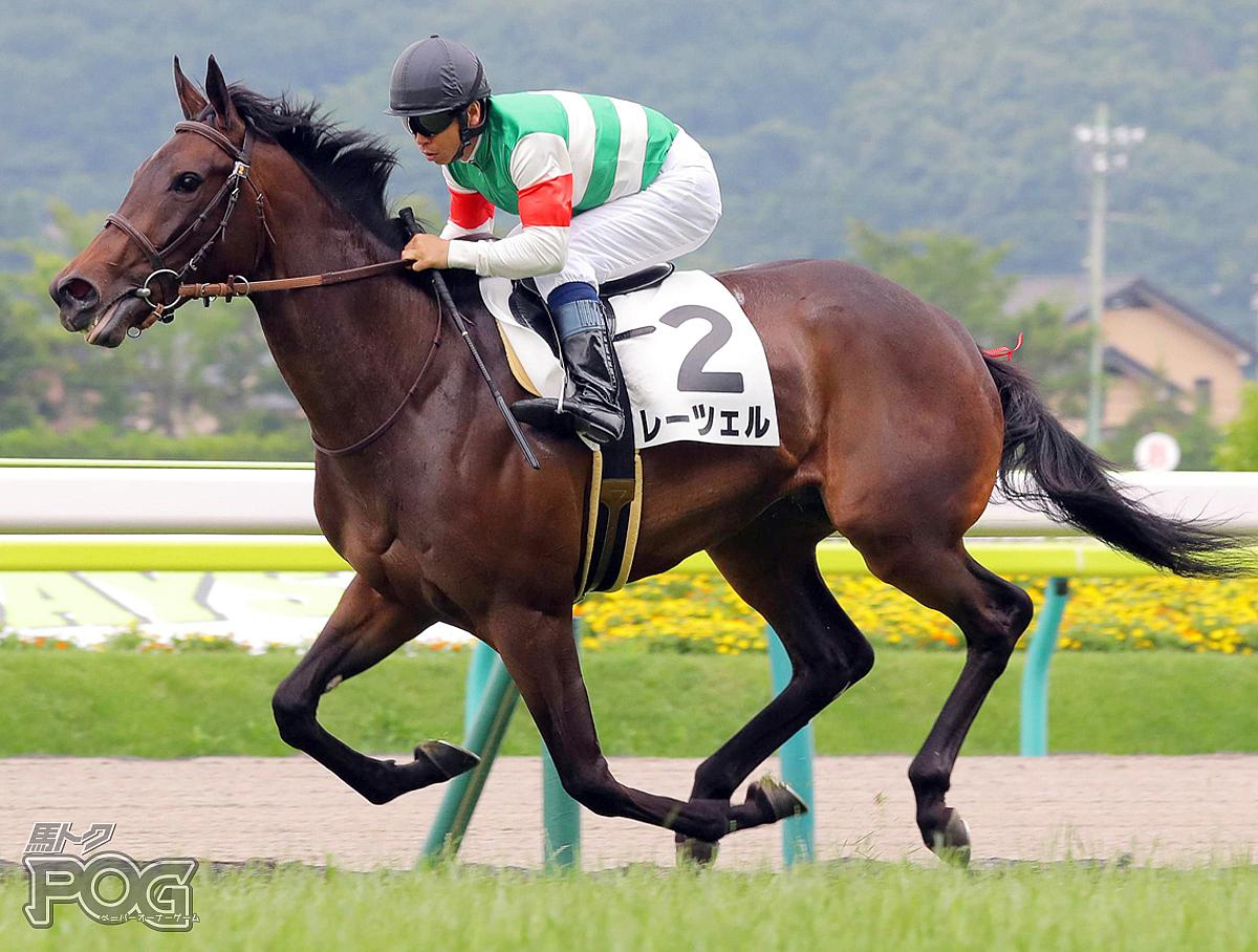 レーツェルの馬体写真