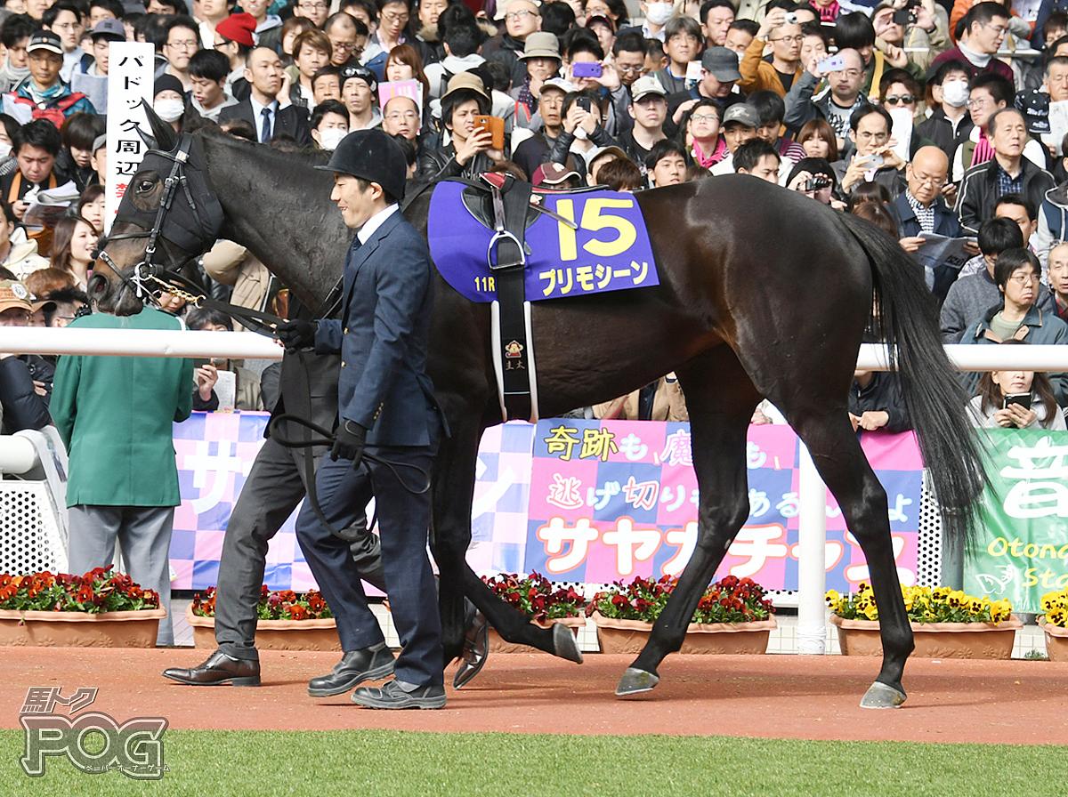 プリモシーンの馬体写真