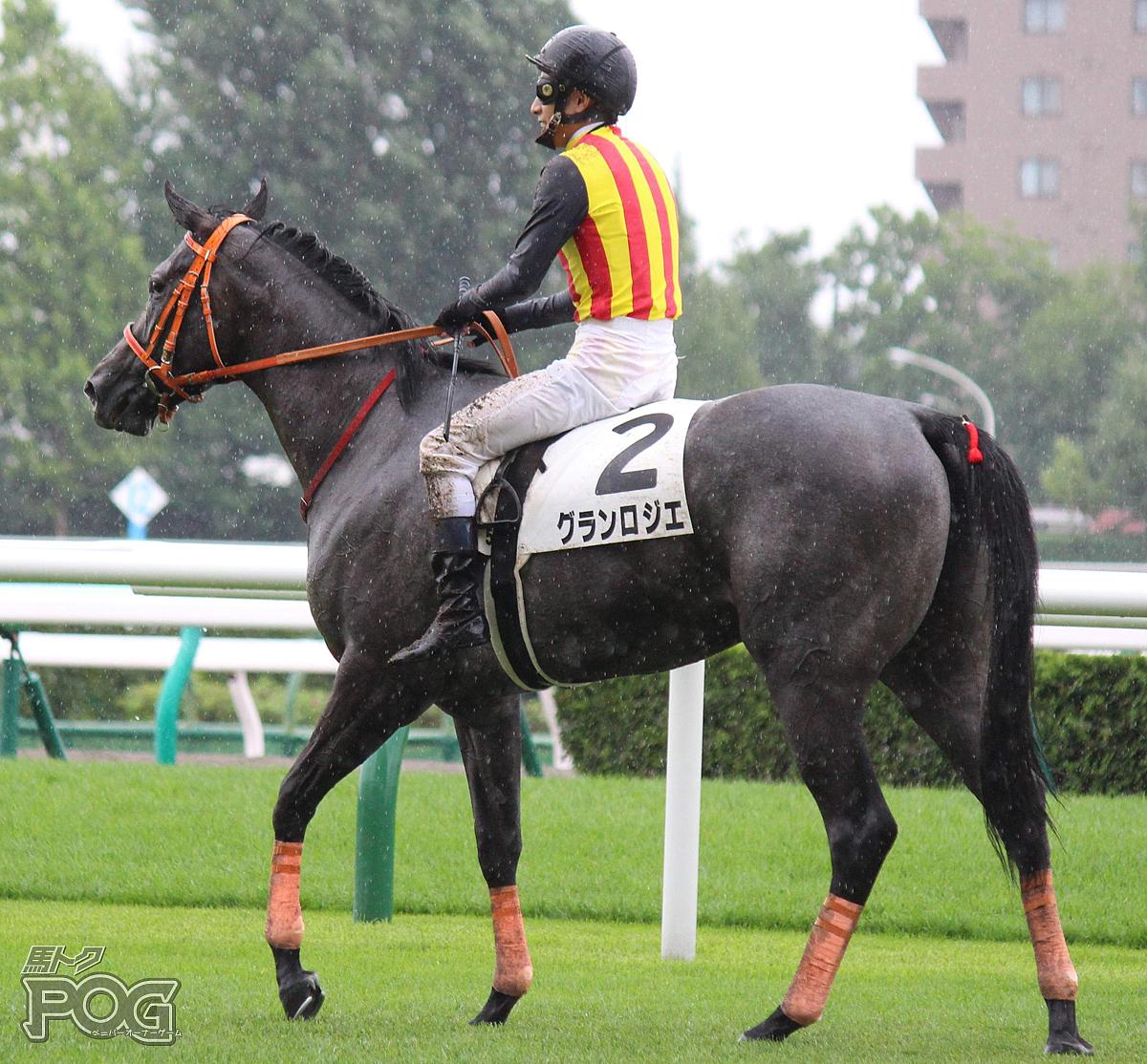 グランロジエの馬体写真