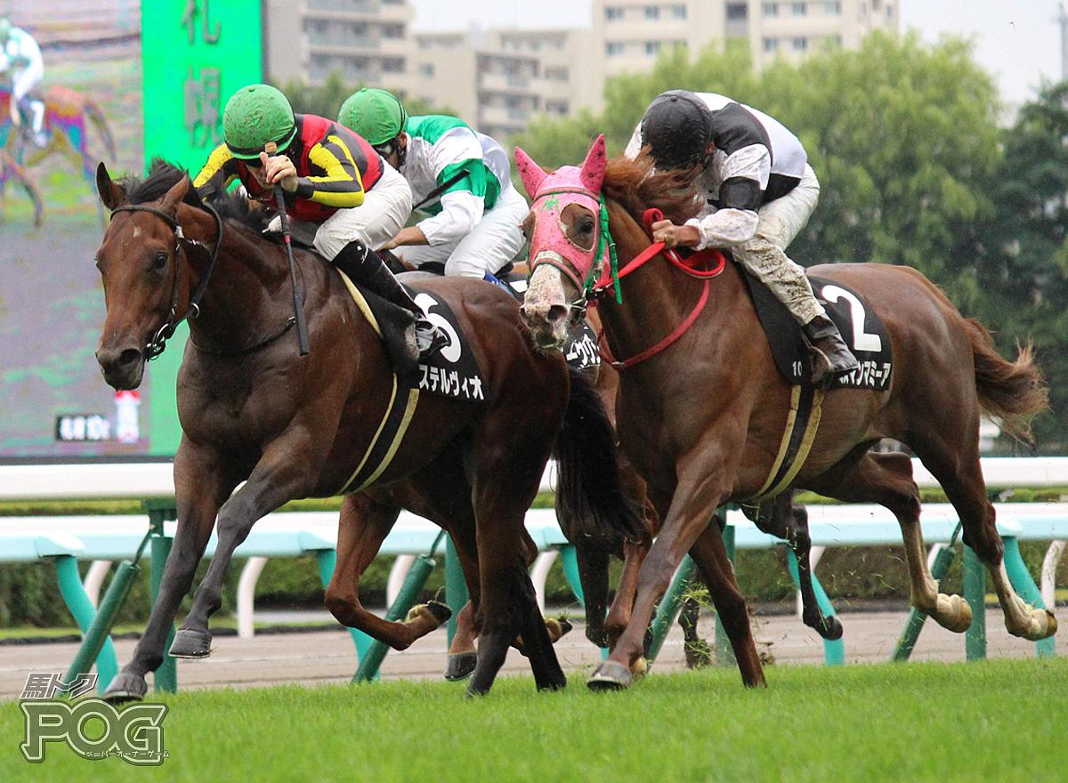 ステルヴィオの馬体写真