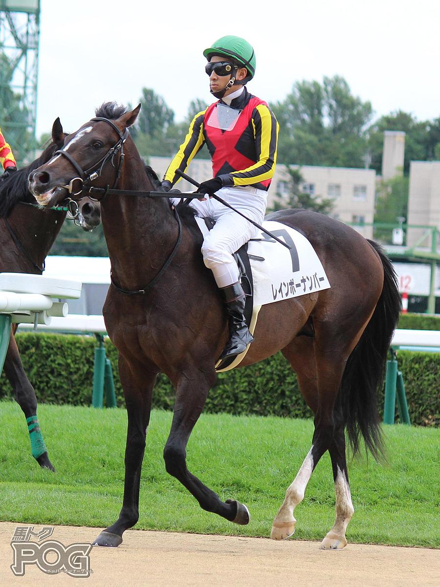 レインボーナンバーの馬体写真