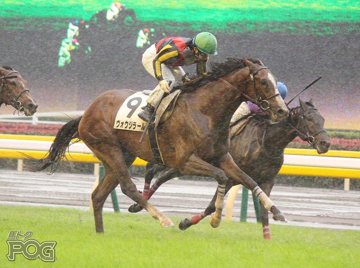 ヴォウジラールの馬体写真