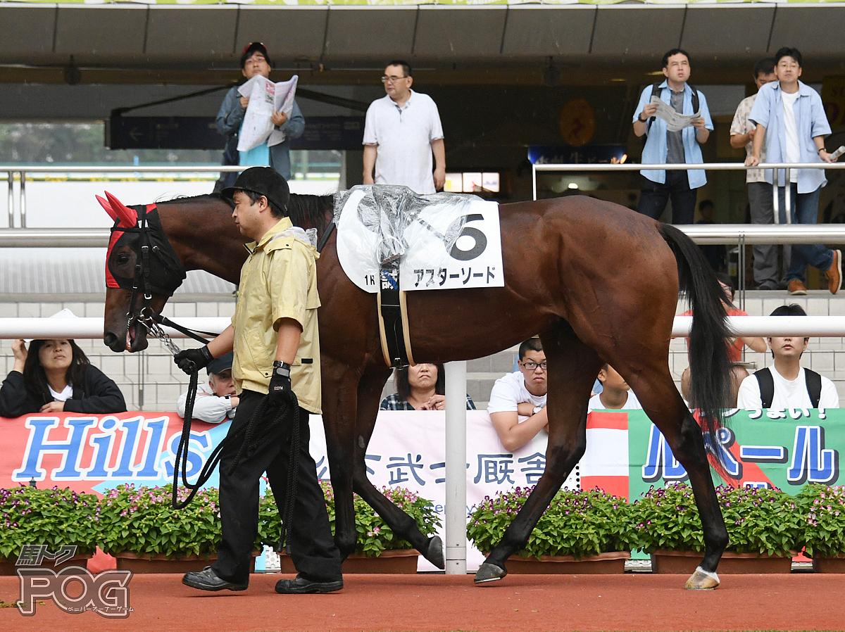 アスターソードの馬体写真