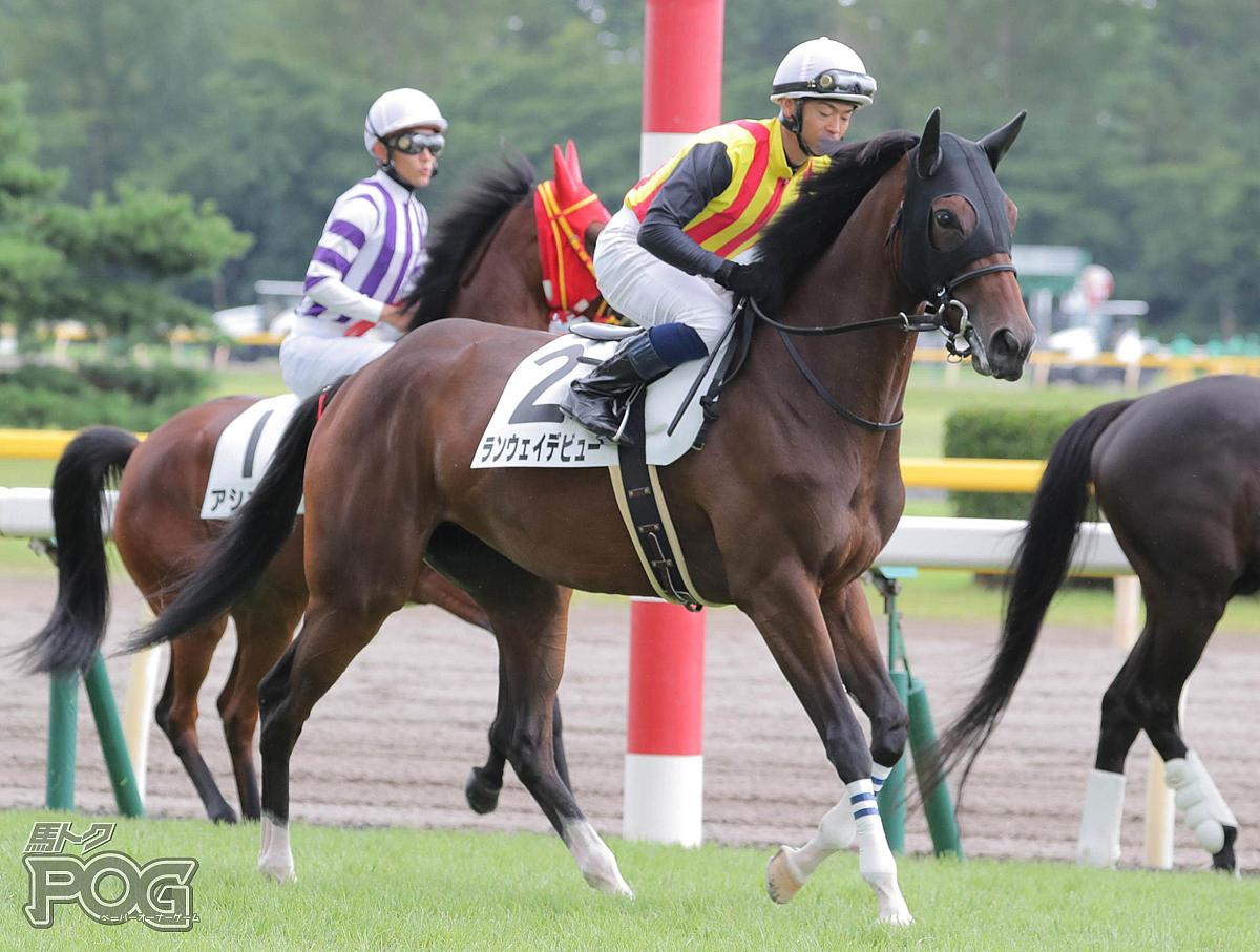 ランウェイデビューの馬体写真