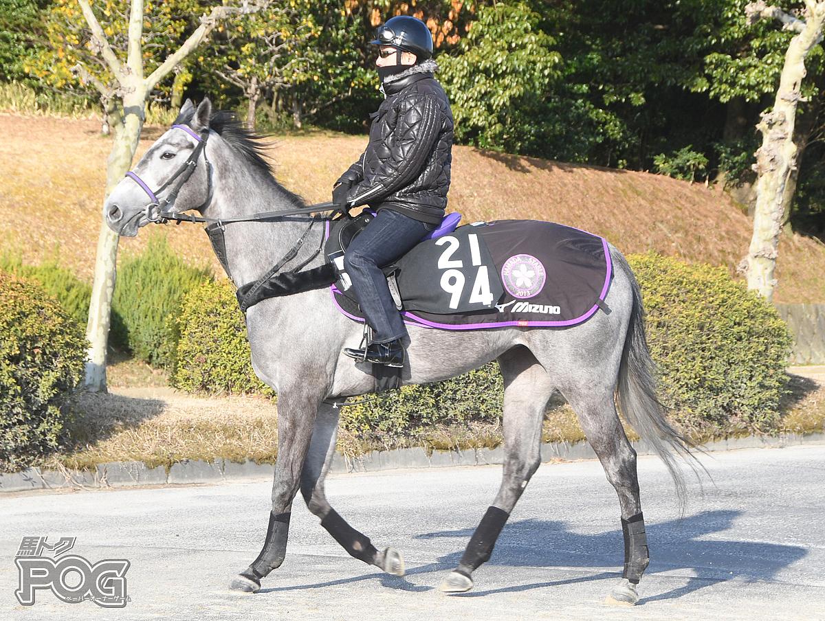 グローバルフェイムの馬体写真