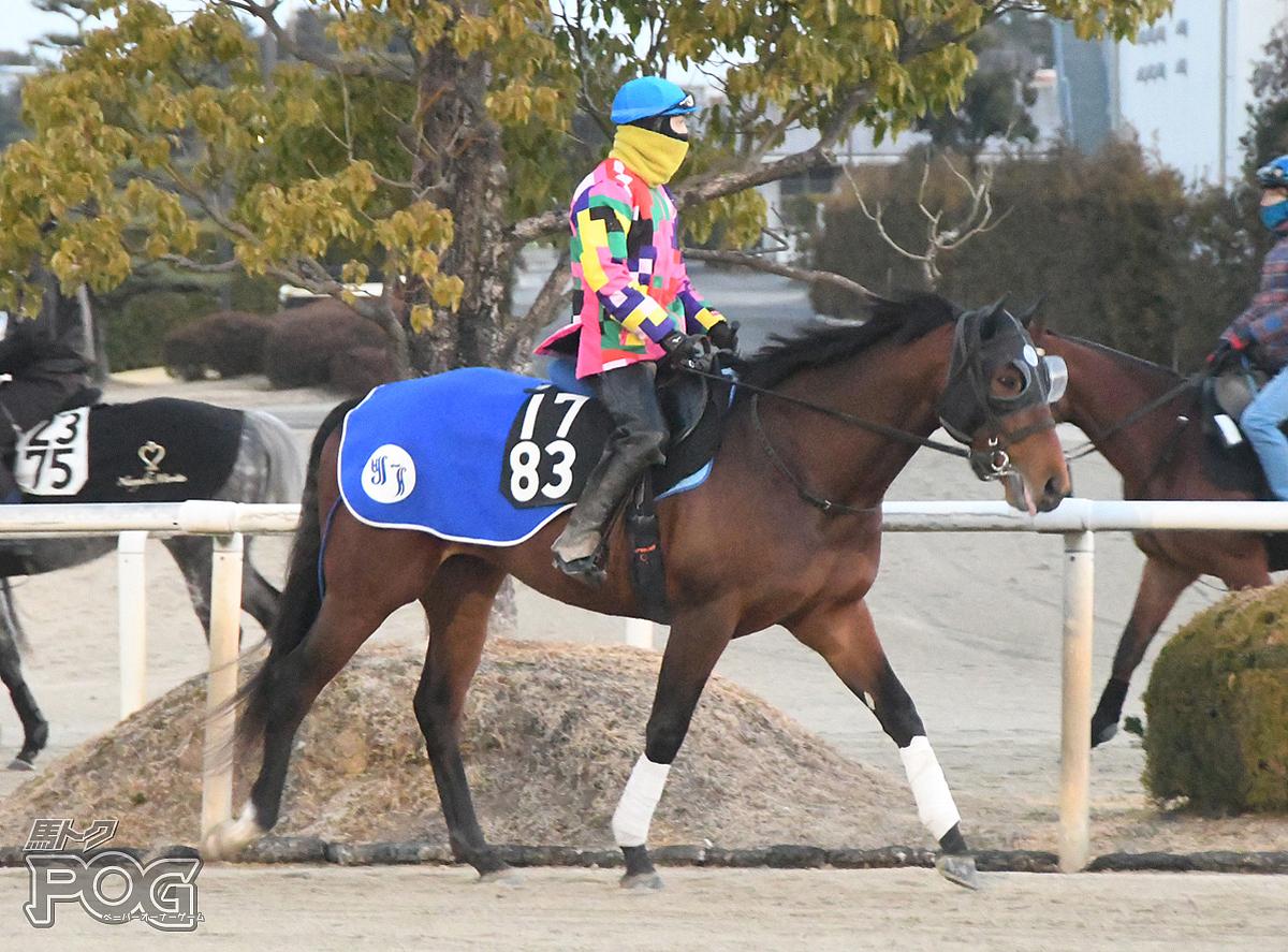 ジュピターカリストの馬体写真
