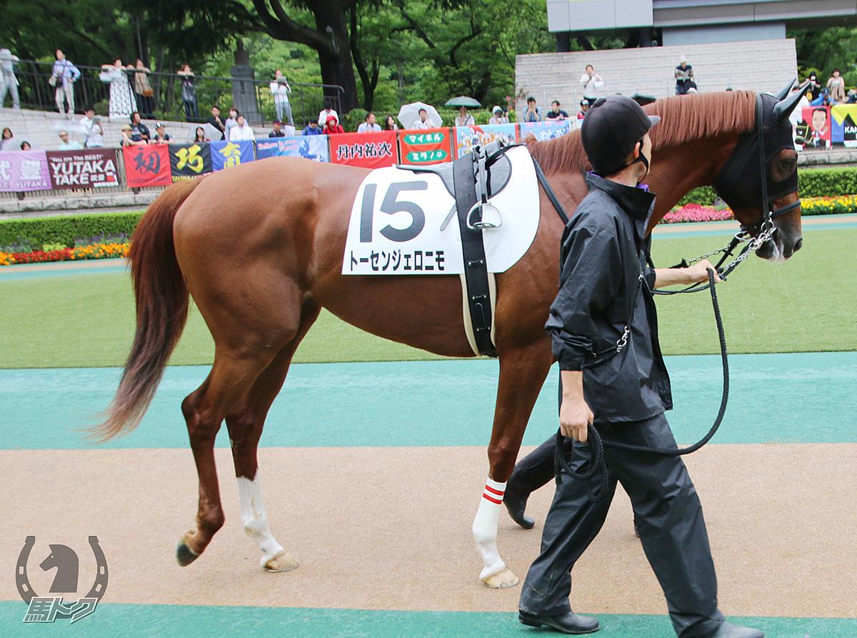 トーセンジェロニモの馬体写真