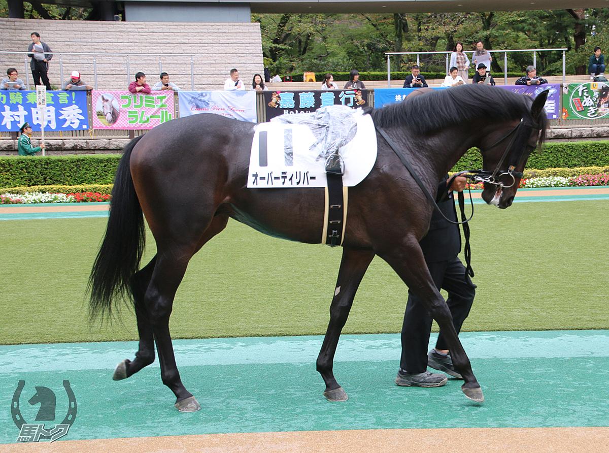 オーバーディリバーの馬体写真