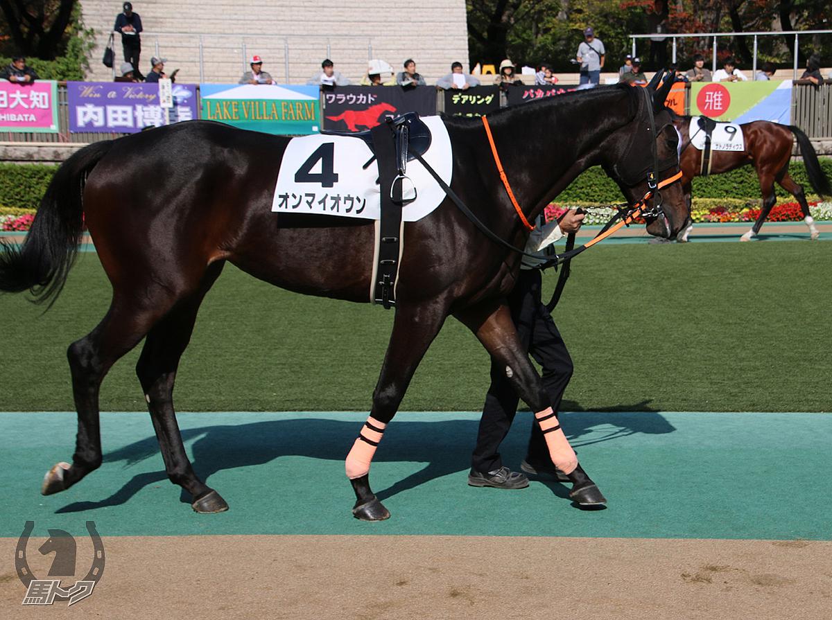 オンマイオウンの馬体写真