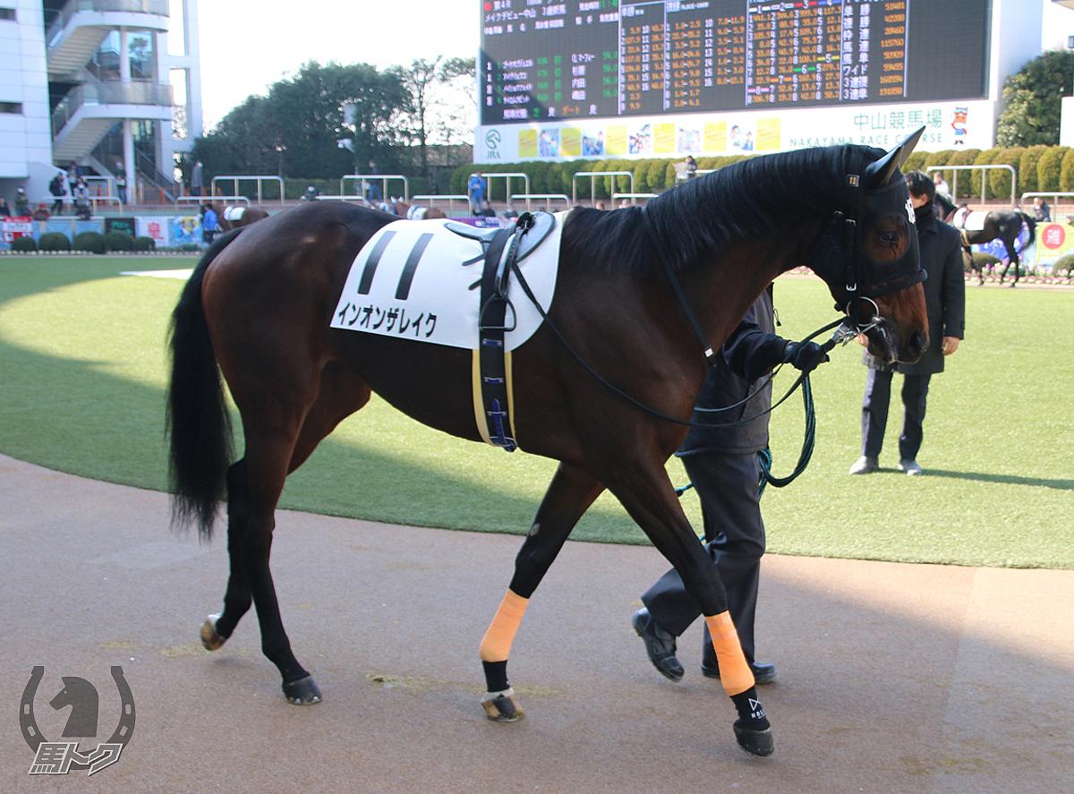 インオンザレイクの馬体写真
