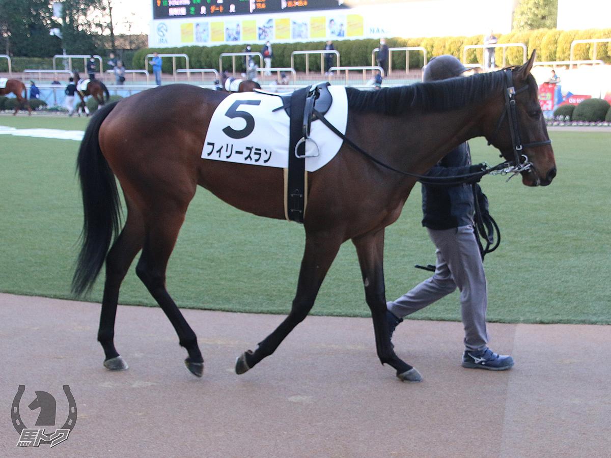 フィリーズランの馬体写真