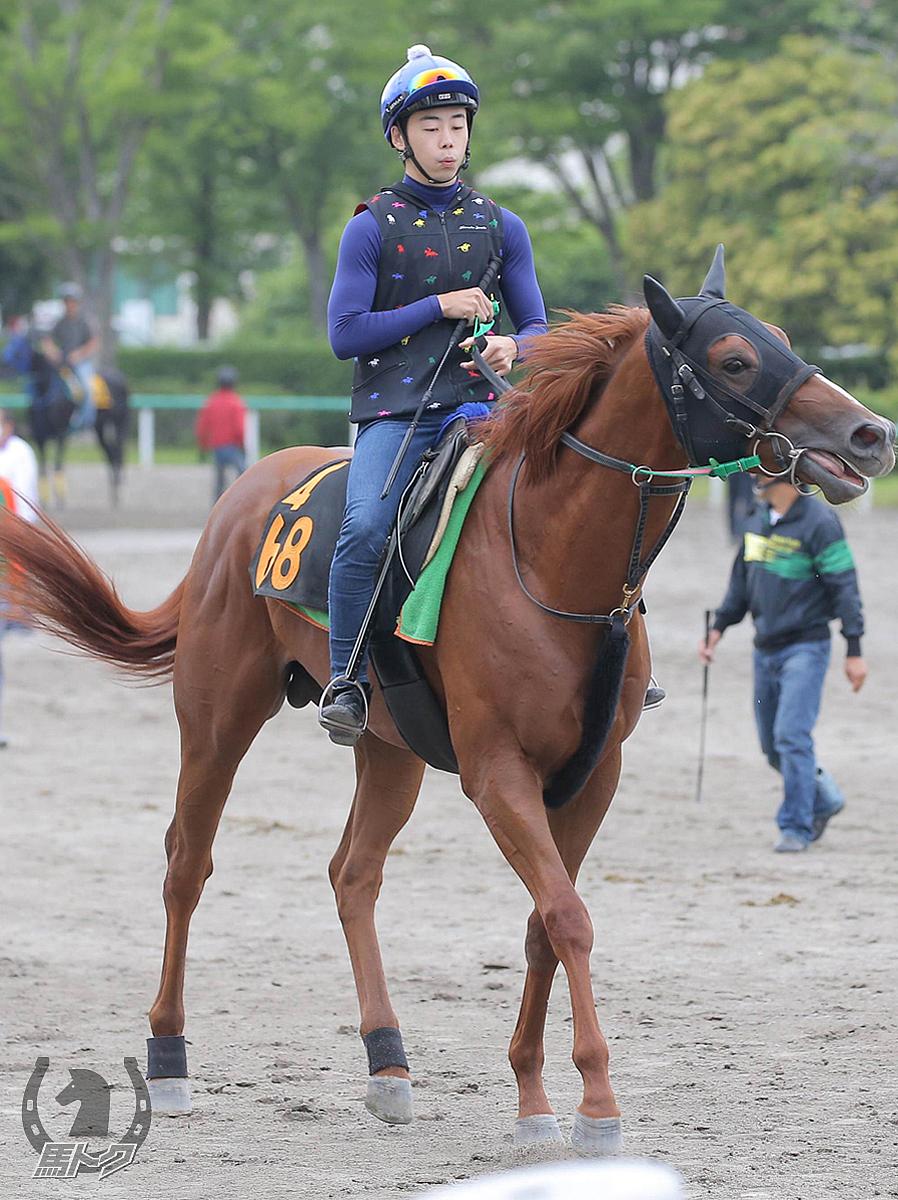 ザディファレンスの馬体写真
